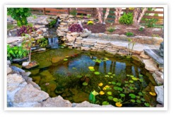 Spring Cleaning and Maintenance for Ponds, Fountains, Water Gardens | Greenwich, Connecticut